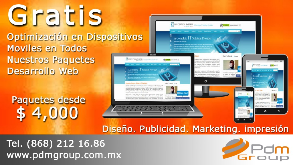 promo web optimizacion